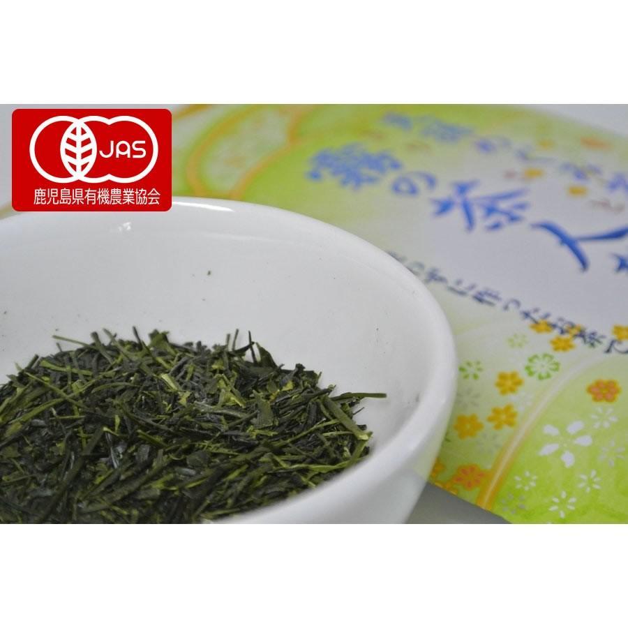 【2021年新茶】 霧島茶 「霧の茶人から」 最高級品 imacha 04
