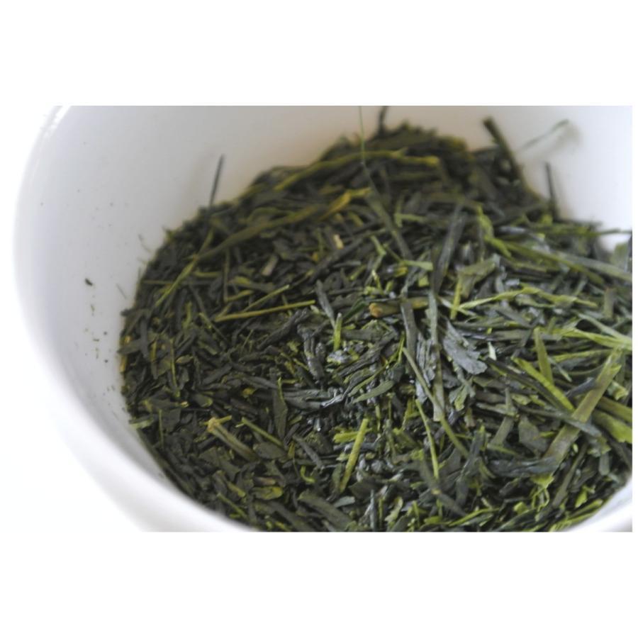 【2021年新茶】 霧島茶 「霧の茶人から」 最高級品 imacha 05