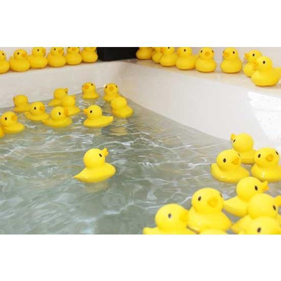 あひるのお風呂温度計(湯温計)O-238&あひる50匹のセット :O-238SET ...
