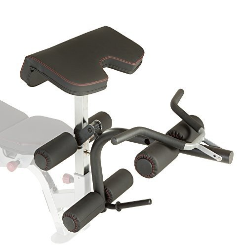 一番人気物 Fitness Developer Reality X-Class Olympic and Preacher Curl X-Class and Leg Developer Attachment【並行輸入品】, 藍住町:b1fc09fc --- airmodconsu.dominiotemporario.com