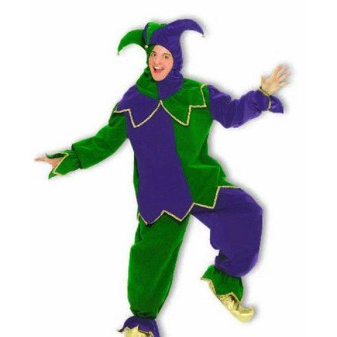 Costume Mardi Gras Jester (紫の / 緑)