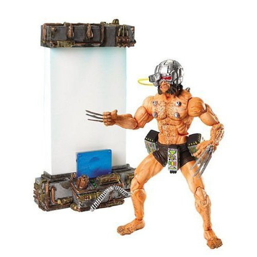 Toy Biz Marvel マーブル Legends Series Vii Weapon X Wolverine ウルヴァリン Action Figure フィギュ