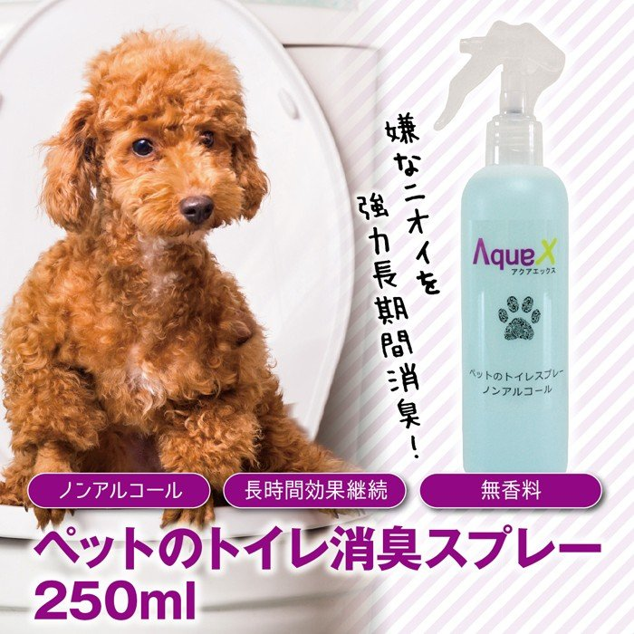 Aqua-X ペットトイレ専用スプレー【250ml】|innocent-coltd-y