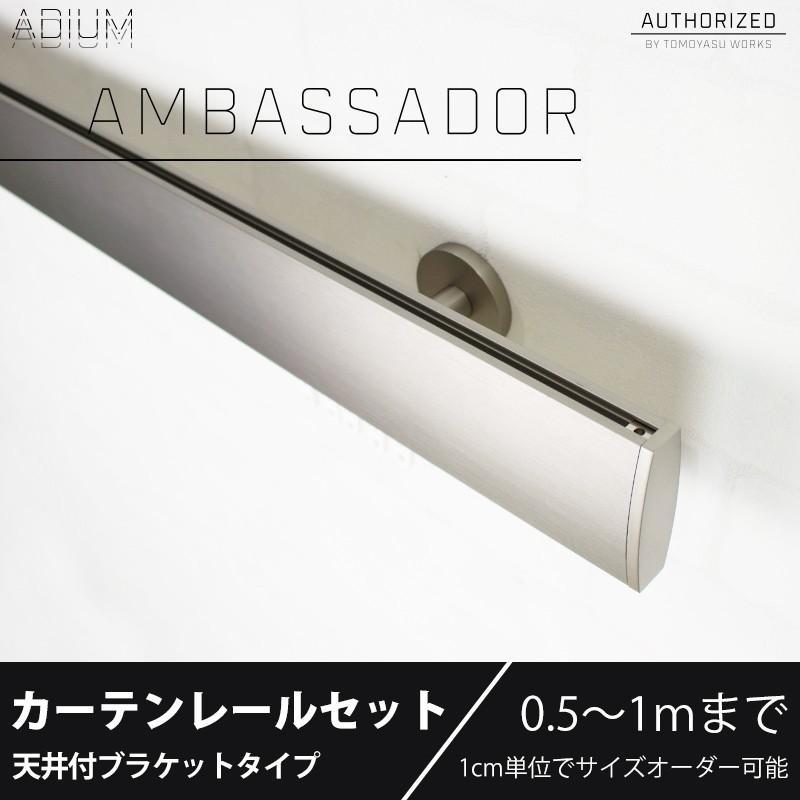アイアンカーテンレール ADIUMシリーズAMBASSADOR アンバサダー シングルセット 0.5〜1mまで