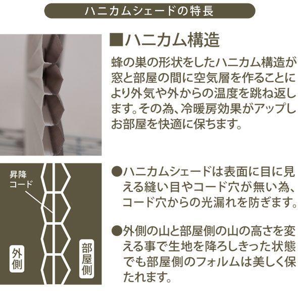 ハニカムシェード ハニカムスクリーン 無地 既製サイズ 幅40cm×高さ135cm BeeBee 直送品 JQ|interior-depot|03