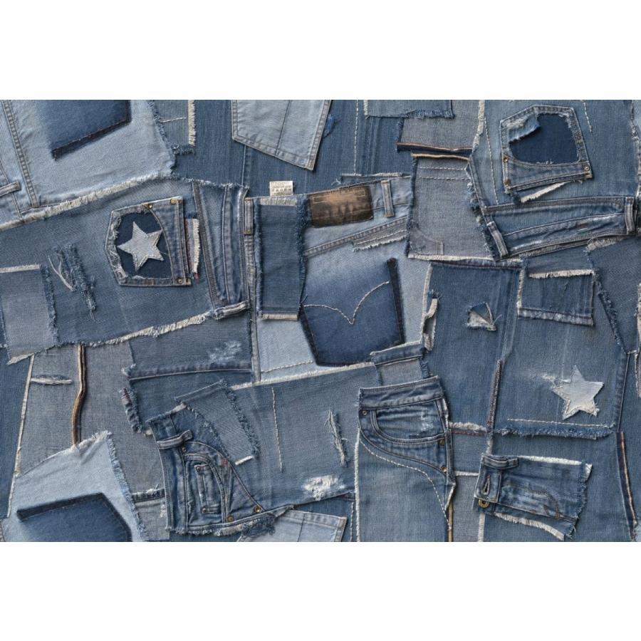 おしゃれな輸入壁紙 クロス ドイツ製 Jeans ジーンズ 8 909 デニム