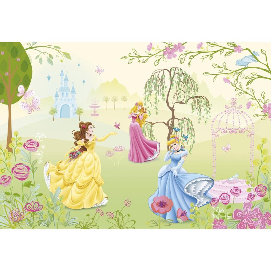 おしゃれな輸入壁紙 クロス 紙 ドイツ製 1 417 Princess Garden