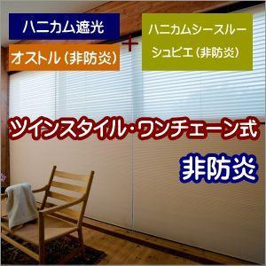 ハニカムスクリーン 非防炎 ニチベイ オストル ツインスタイル(ワンチェーン式) 幅81〜120cmX高さ261〜300cmまで