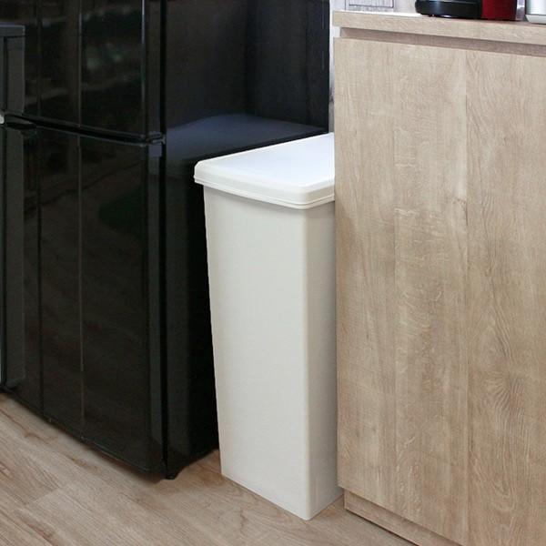 ゴミ箱 45リットル 分別 ふた付き 分別 スライドペール 45L ごみ箱 ダストボックス ( キッチン スライド キャスター スリム おしゃれ おすすめ )|interior-palette|11
