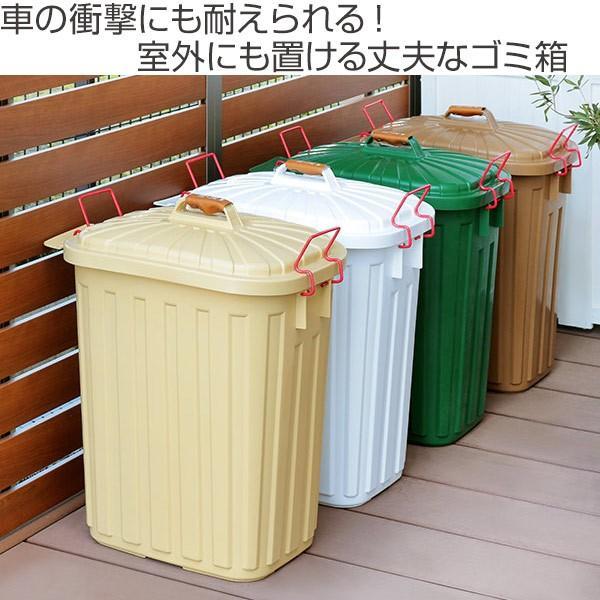 ゴミ箱 屋外 ふた付き PALE×PAIL ペールペール ダストビン 60L 大容量 ( ごみ箱 キッチン 60 リットル ダストボックス )|interior-palette|02