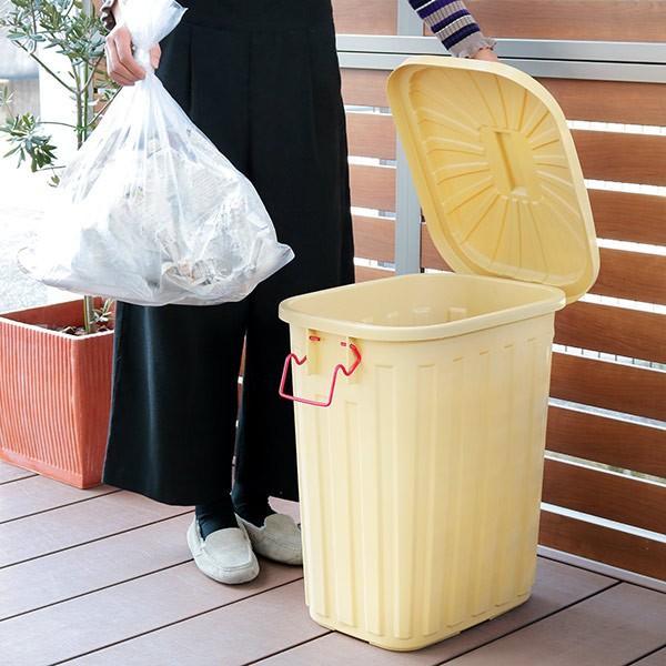 ゴミ箱 屋外 ふた付き PALE×PAIL ペールペール ダストビン 60L 大容量 ( ごみ箱 キッチン 60 リットル ダストボックス )|interior-palette|08