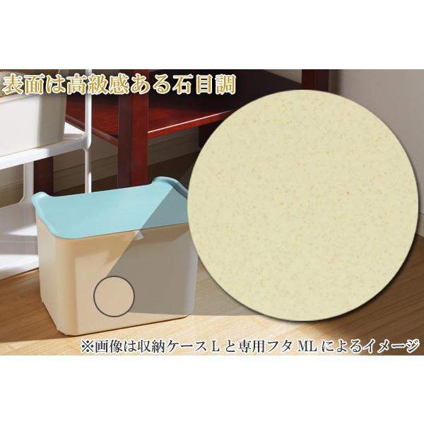 収納ボックス カタス L カラーボックス インナーボックス 引き出し 同色3個セット ( 収納ケース 収納 プラスチック ケース ボックス )|interior-palette|05