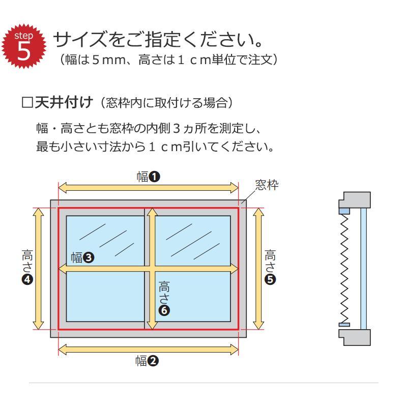 【送料無料】プリーツスクリーン 機能性とデザイン性を兼ね備えた タチカワ ペルレ 無地 エブリ PS-6215〜6244 ペルレ チェーン式|interiorkataoka|05