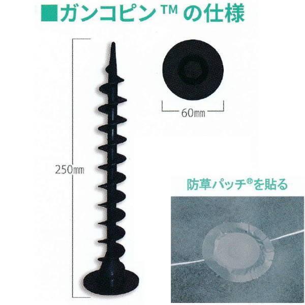 グリーンフィールド ガンコピン ブラック 評判 250mm P-GA250 50本 特価 防草パッチ50枚
