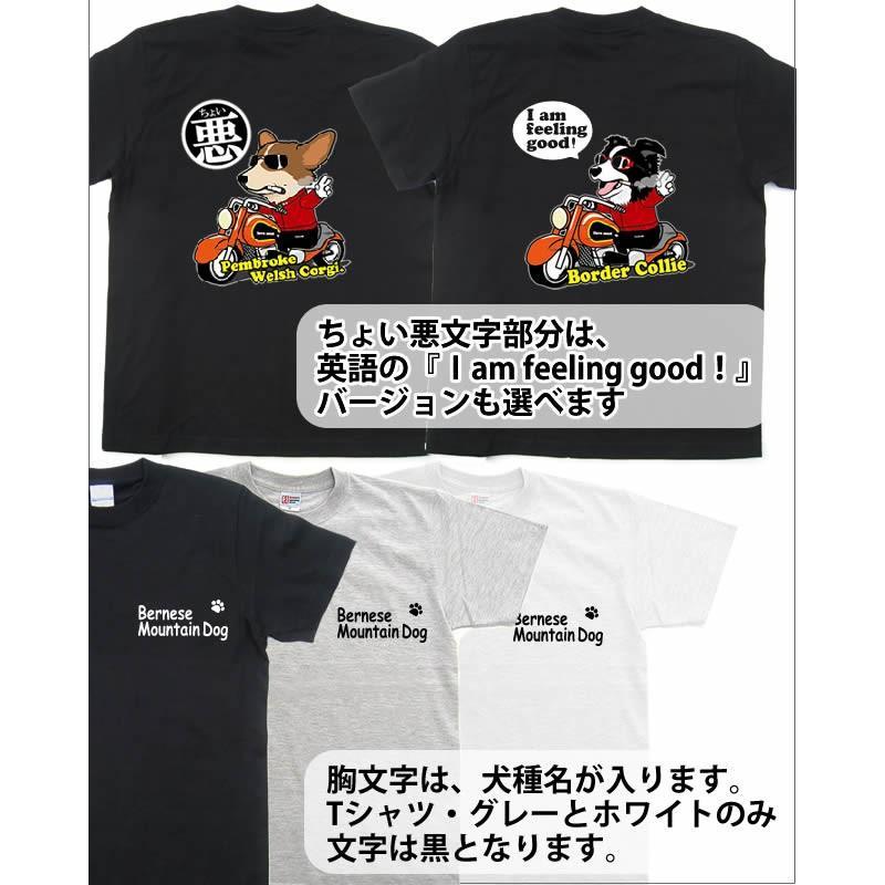 名前入れ オーナー Tシャツ 半袖 ちょい悪 各種 メンズ レディース 小型 大型犬 犬 犬屋 ブランド小型~大型犬|inuya|02