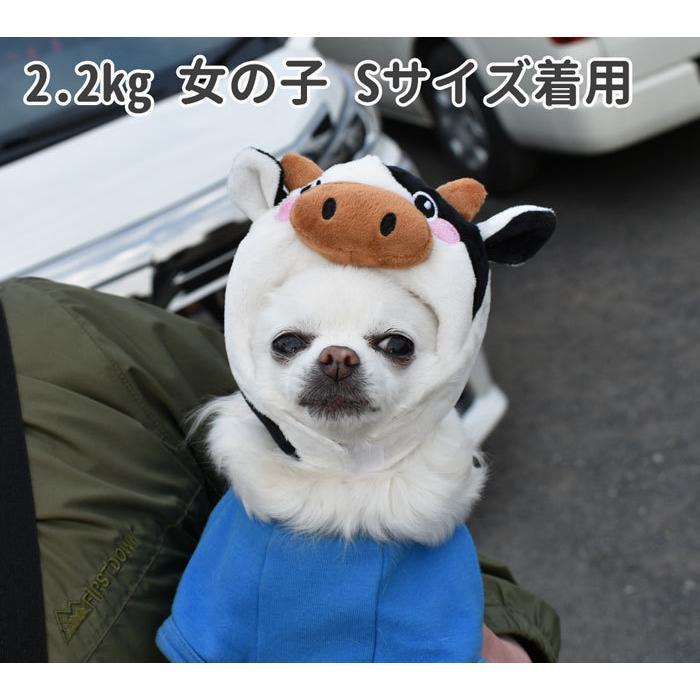 牛 S/M【犬 帽子 キャップ かぶりもの コスプレ 小型犬 うし ウシ】 グッズ 犬屋 チワワ ヨーキー トイプードル マルチーズ ダックスフンド など かぶり帽|inuya|04