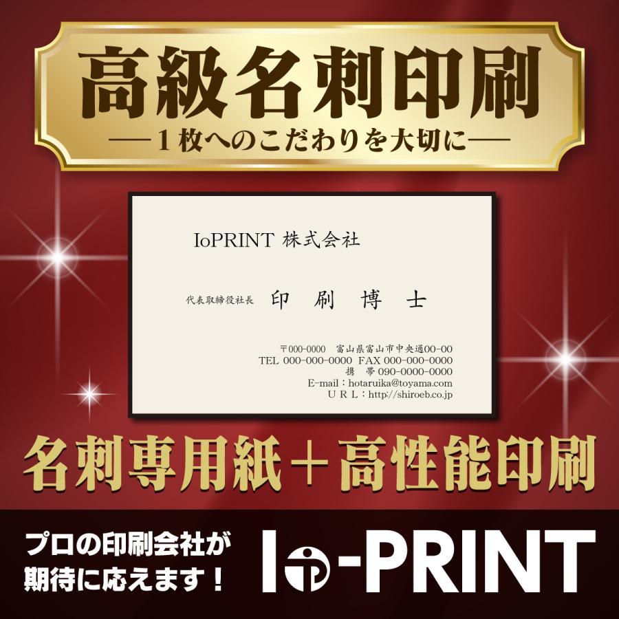 レビューを書けば送料当店負担 名刺作成 ついに再販開始 高品質 100枚 白黒印刷 選べる名刺専用紙 送料無料 データ入稿印刷も可能 校正なし