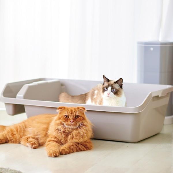 (OFT) HY REX ハイレックス【送料無料(北海道・沖縄・離島等除く)】 [大型 大きい 猫 ネコ ねこ トイレ 多頭 ビッグ 大容量 オープン おしゃれ 人気]|ip-plus