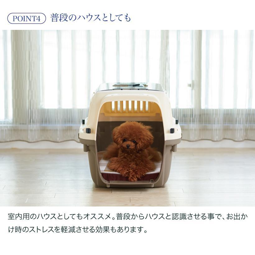(OFT) ペットケンネル・ファーストクラス トップオープンクリア L60T (おしゃれ おすすめ ランキング 小型犬 猫 小動物 ハードキャリー コンテナ クレート 上扉) ip-plus 17