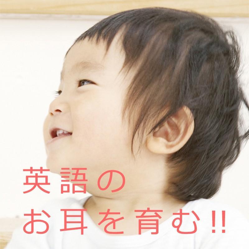発達障害や自閉症の子供が大量の英単語とフレーズ、英会話を「見て学べる」視覚支援DVD教材の「フラッシュえいご4巻」|iqgakuen|09