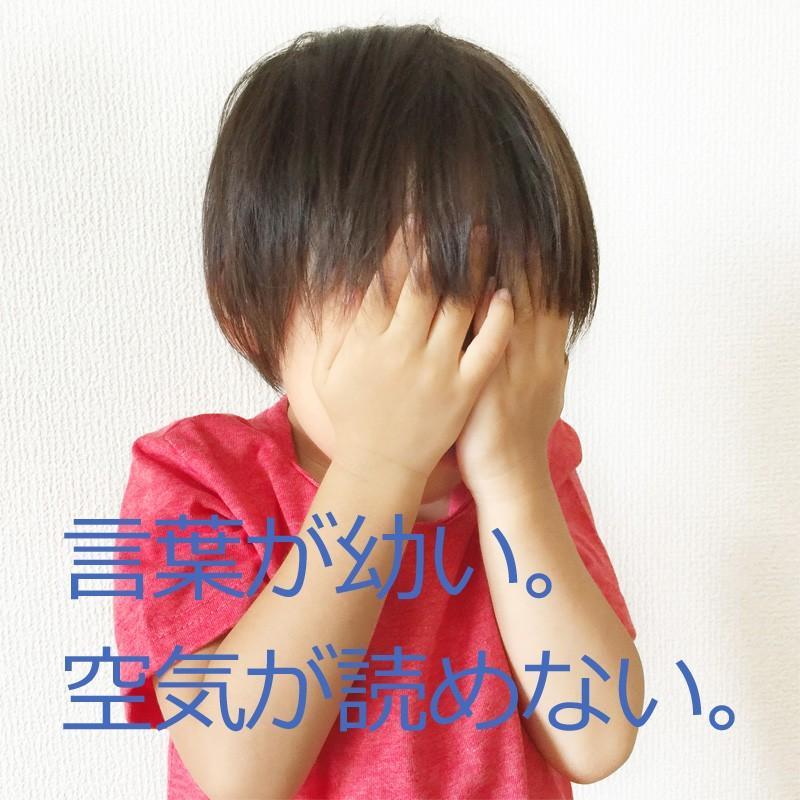 発達障害 自閉症の改善をサポートする/絵カード/フラッシュカードDVD教材/「見て学べる」シリウス38巻|iqgakuen|02