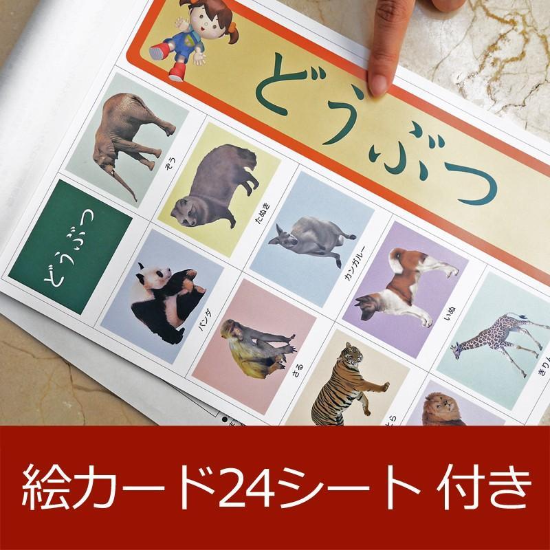 発達障害 自閉症の改善をサポートする/絵カード/フラッシュカードDVD教材/「見て学べる」シリウス38巻|iqgakuen|07