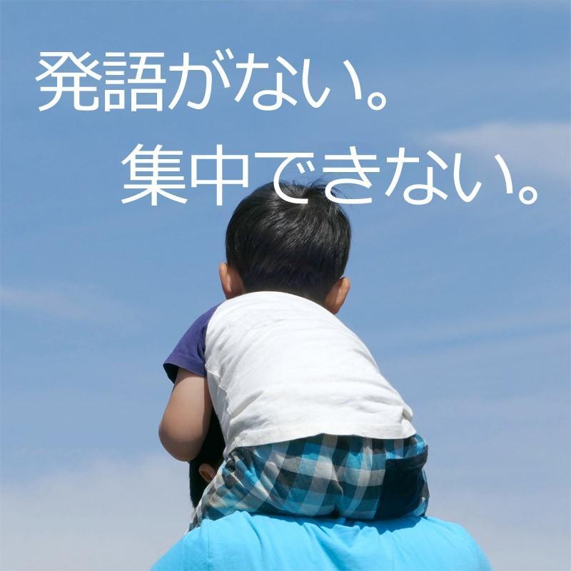発達障害/絵カード/フラッシュカードDVD教材/言葉が出にくい子が「見て学べる」視覚学習36巻|iqgakuen|02