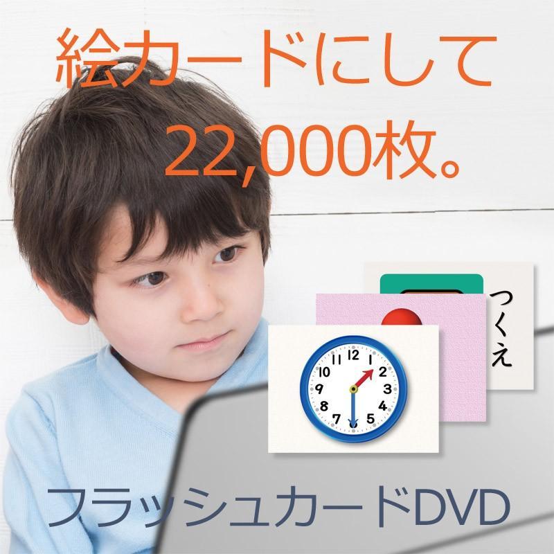 発達障害/絵カード/フラッシュカードDVD教材/言葉が出にくい子が「見て学べる」視覚学習36巻|iqgakuen|06