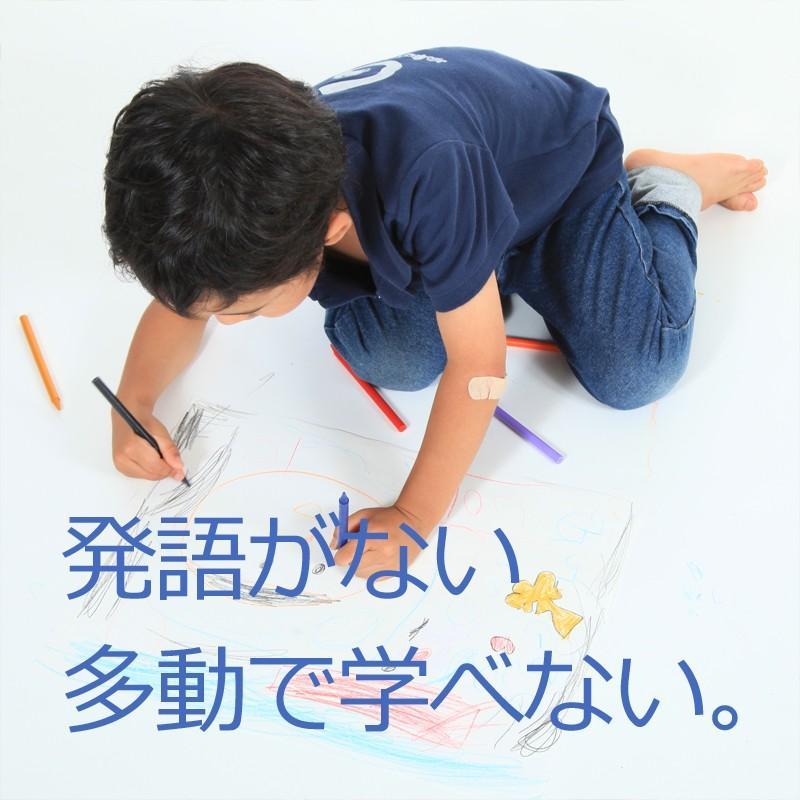 発達障害 自閉症の改善をサポートする/絵カード/フラッシュカードDVD教材/「見て学べる」マイスター74巻|iqgakuen|02