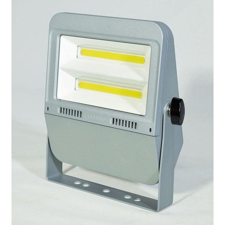 作業灯 屋外 ワークライト 工事用照明 多目的照明 フラットライト50W 昼白色 LEN-F50D-SL-50K 日動工業