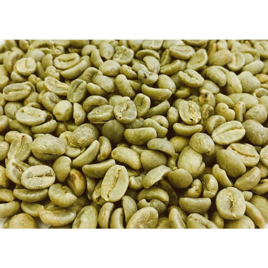 コロンビア ナリーニョスプレモ (地域指定)生豆1kg iritateya 03
