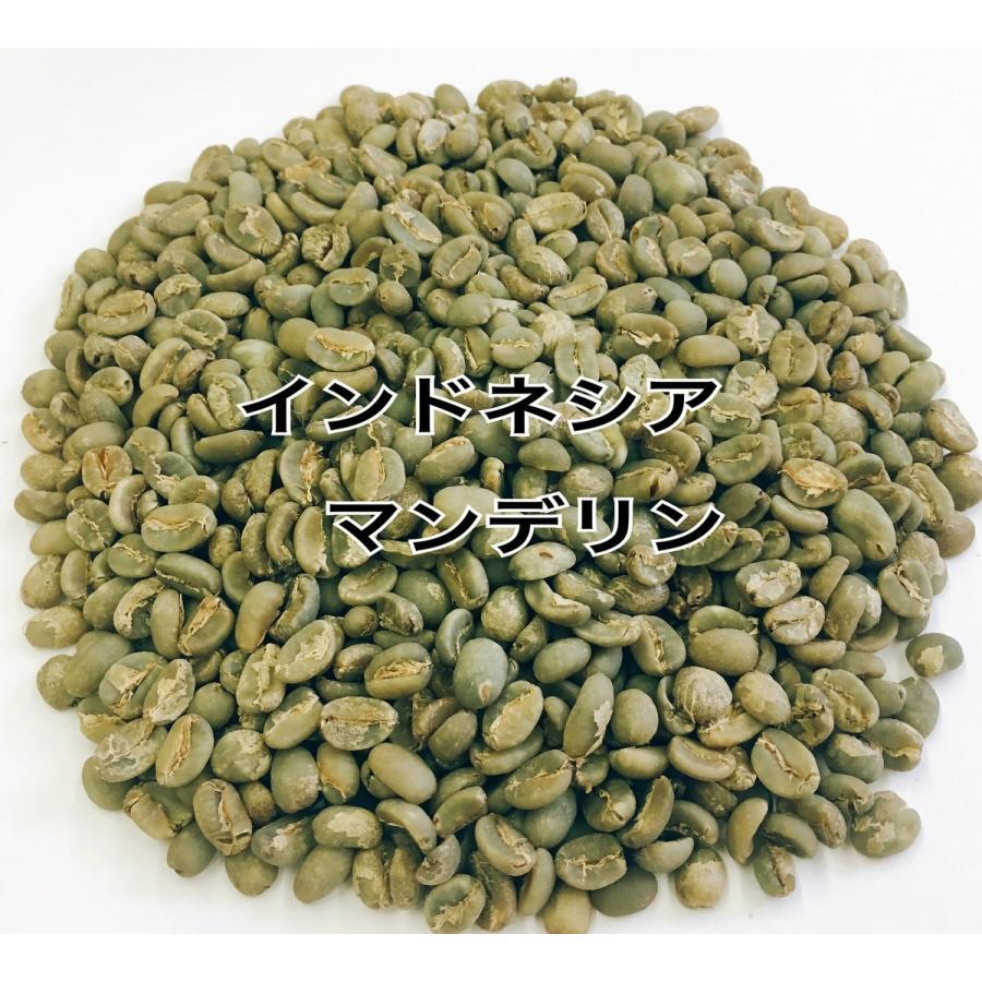 マンデリンG1 スペシャル 1kg 生豆|iritateya|02