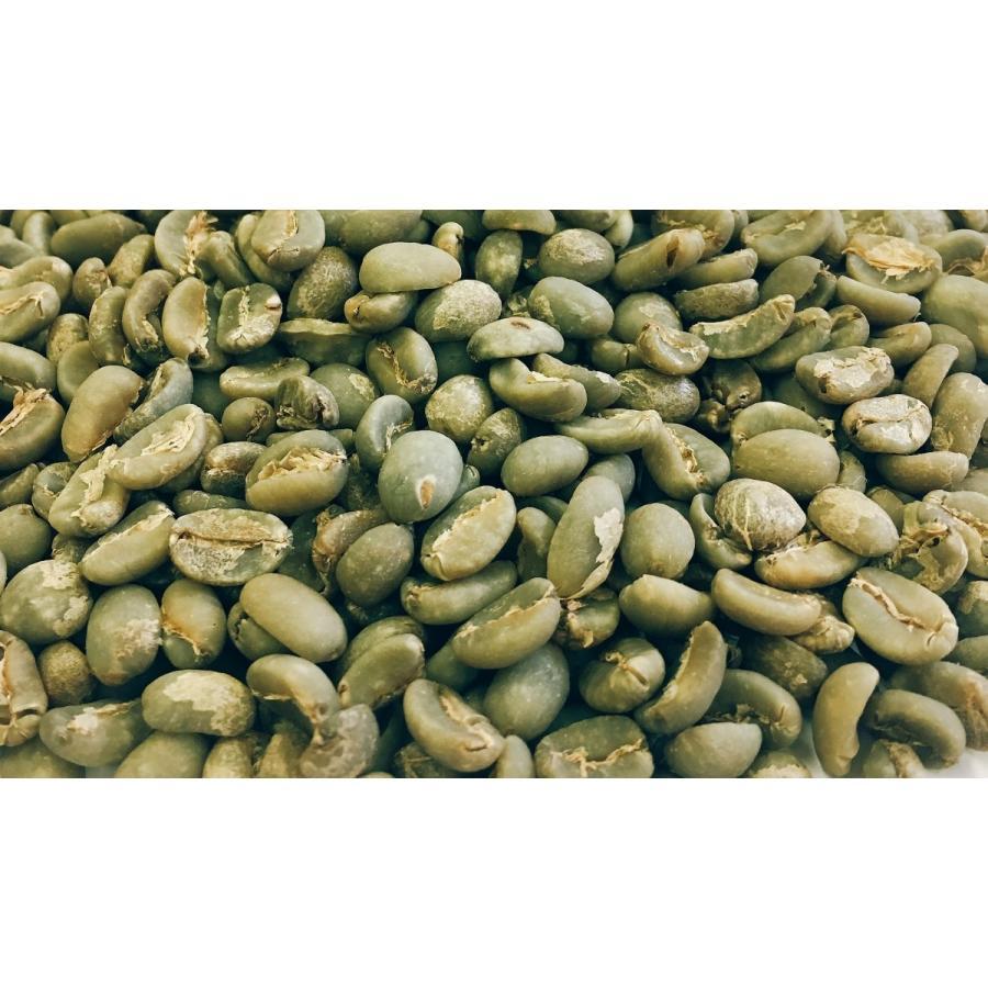 マンデリンG1 スペシャル 1kg 生豆|iritateya|03