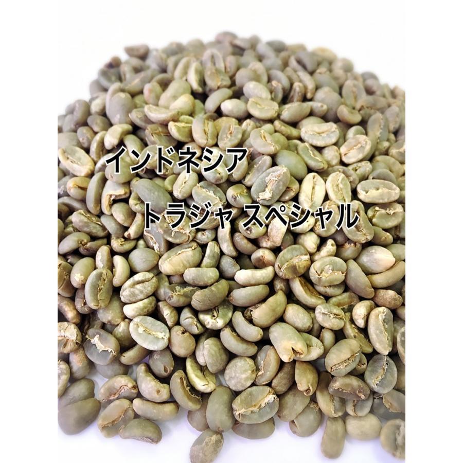 トラジャスペシャル 1kg 生豆|iritateya|02