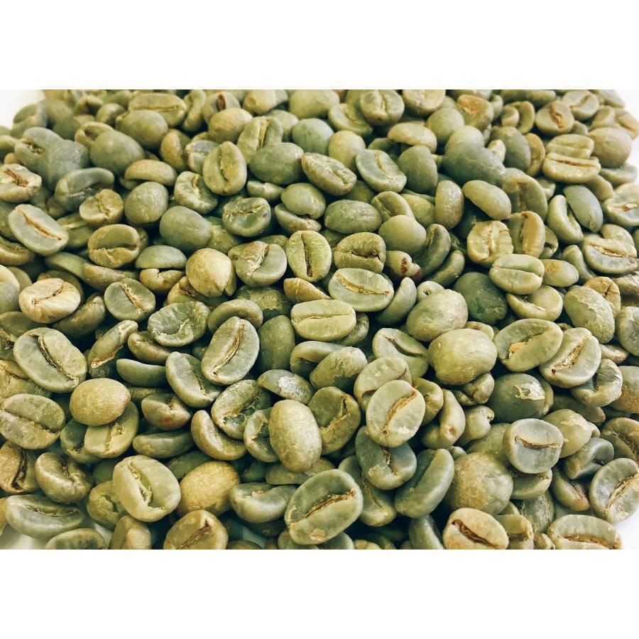 トラジャスペシャル 1kg 生豆|iritateya|03