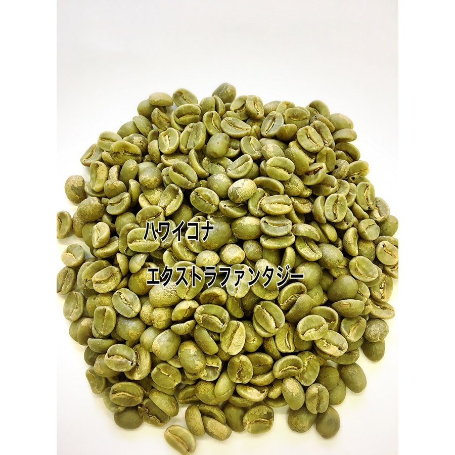 ハワイコナ・エクストラファンシー 1kg 生豆 |iritateya|02