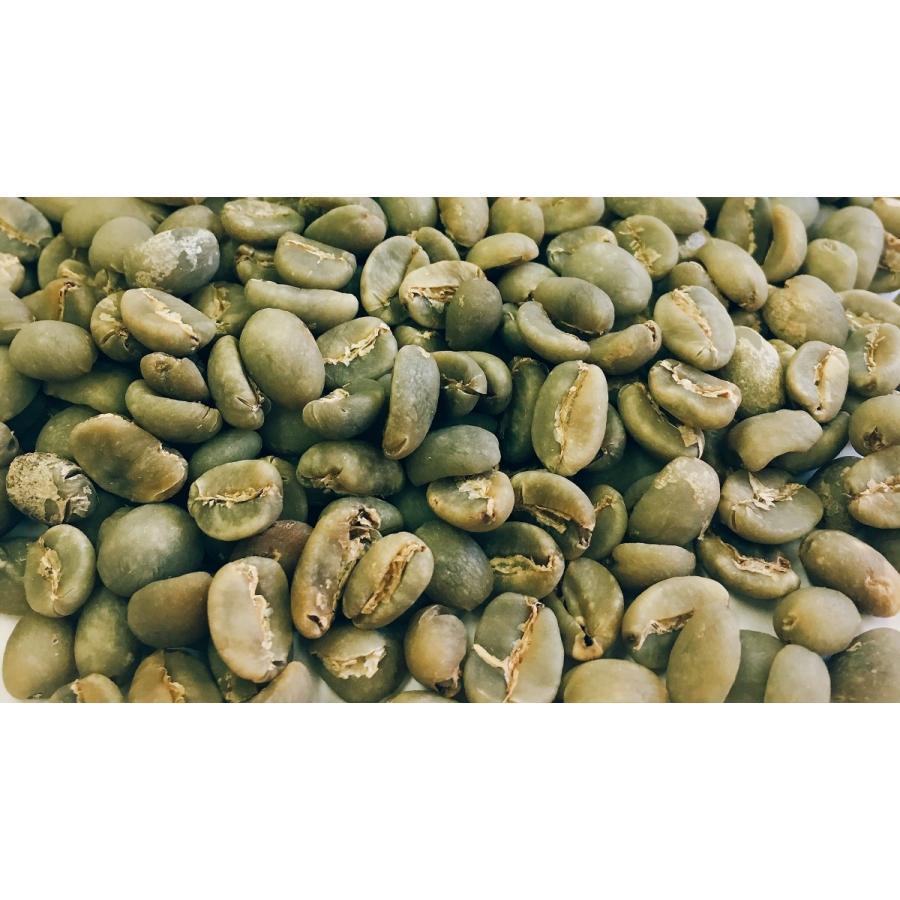 ハワイコナ・エクストラファンシー 1kg 生豆 |iritateya|03