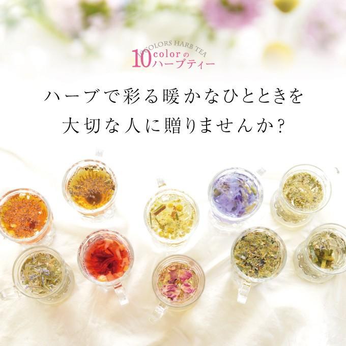 【色茶10色おためしセット】〜色茶を楽しむ15日間のメルマガ配信〜送料無料☆代引不可 iroha-chaten 12