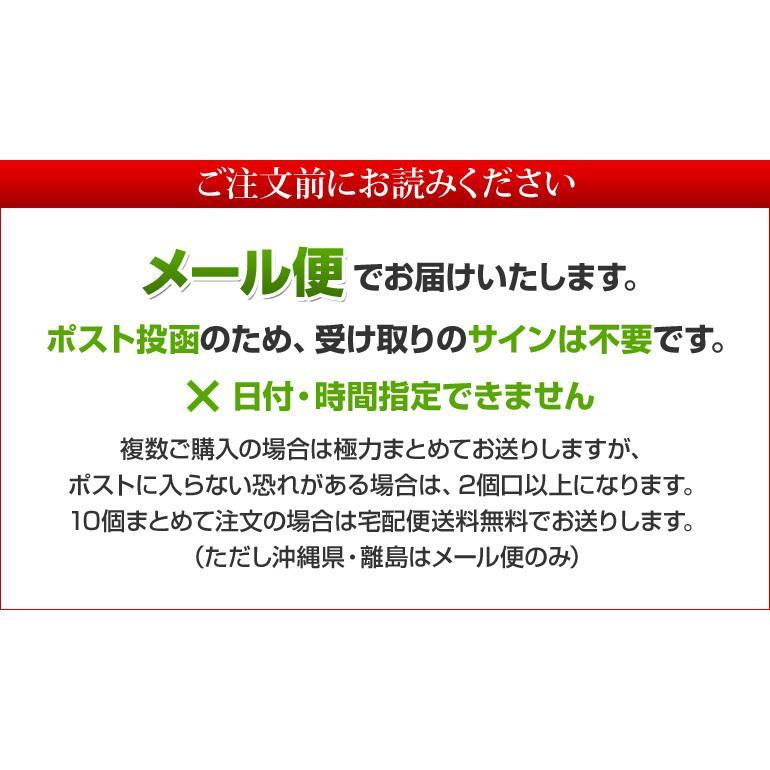 伊勢茶ギャバロン茶ティーパック2g×20pメール便送料無料 isecha 03