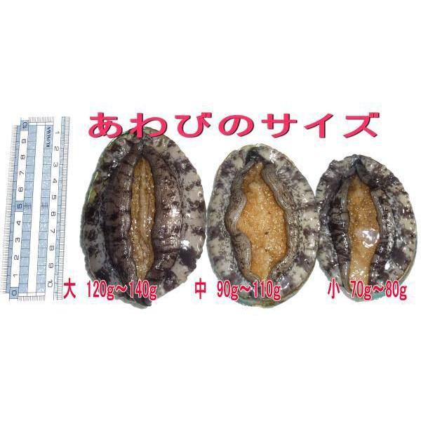活蝦夷アワビ  100g 1個[あわび] isemaruka 04