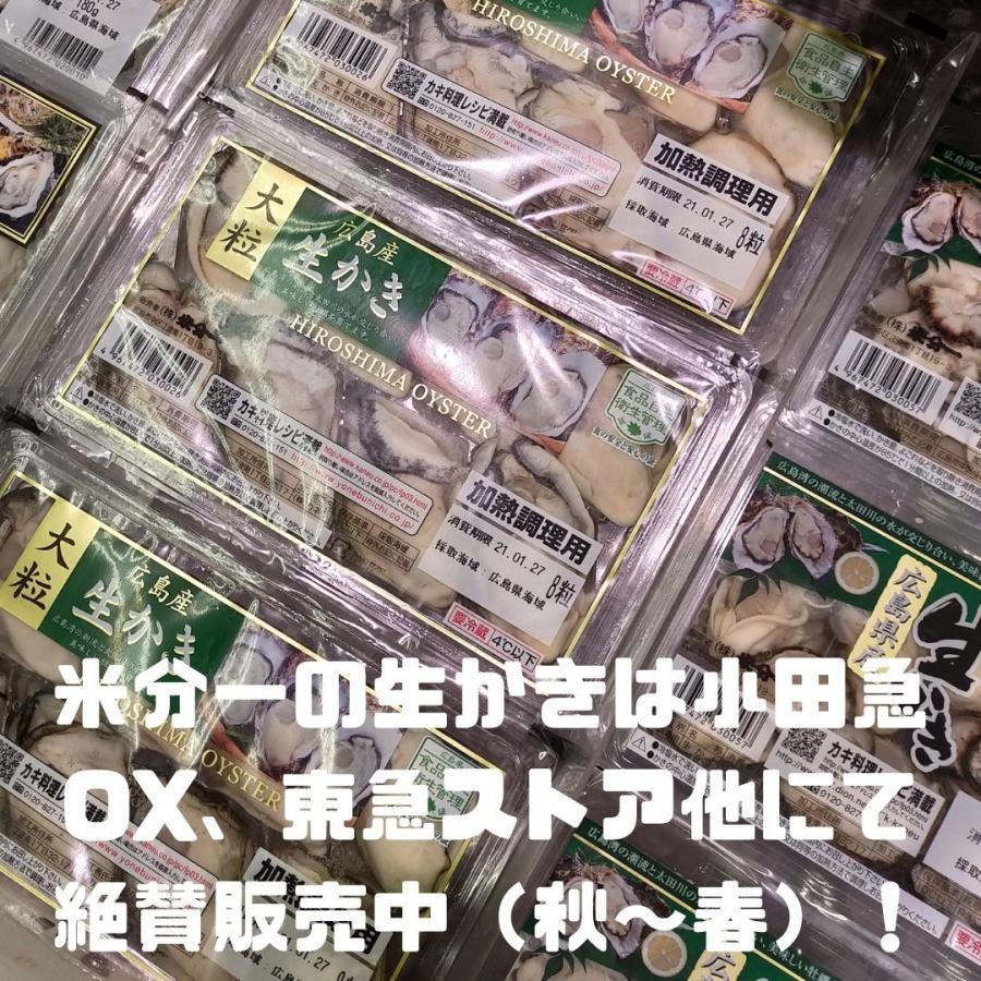 亜鉛 サプリ おすすめ 令和の広島かき 2個セット 牡蠣 ビタミンC 八重山クロレラ 葉酸 ビタミンD サプリメント|ishmaelshop|07