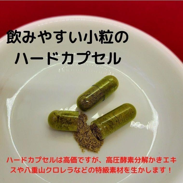 亜鉛 サプリ おすすめ 令和の広島かき 5個セット 牡蠣 ビタミンC 八重山クロレラ 葉酸 ビタミンD サプリメント|ishmaelshop|03