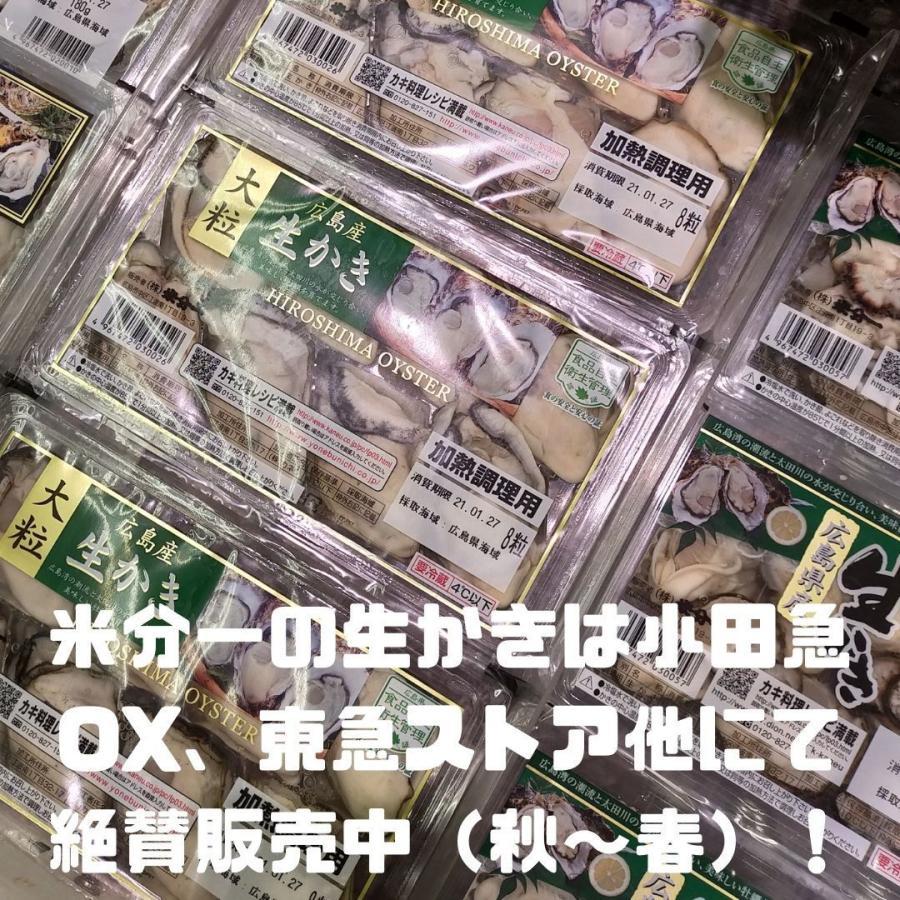 亜鉛 サプリ おすすめ 令和の広島かき 5個セット 牡蠣 ビタミンC 八重山クロレラ 葉酸 ビタミンD サプリメント|ishmaelshop|09