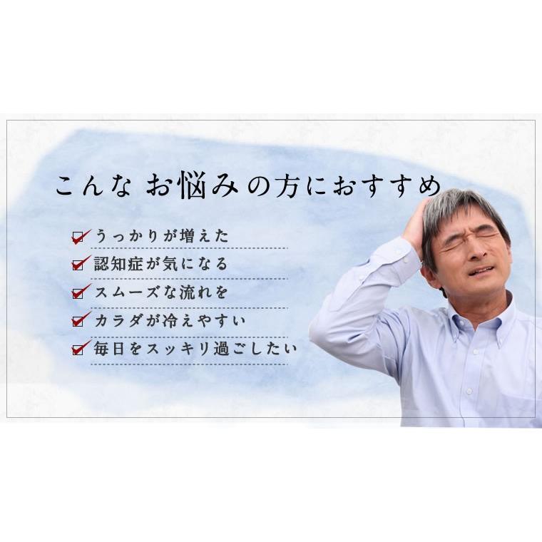 イチョウ葉 サプリ サプリメント 医食同源のイチョウ葉粒 90粒 30日分 機能性表示食品 カプセルタイプ|ishokudogen-store|02
