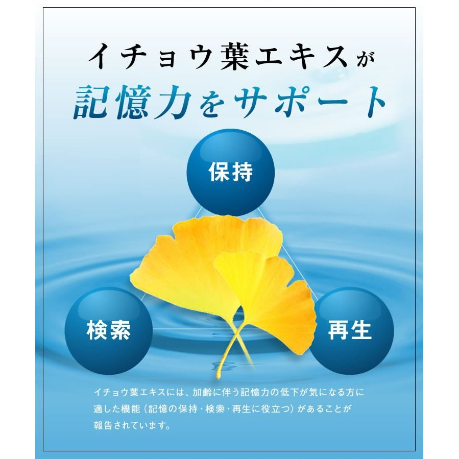 イチョウ葉 サプリ サプリメント 医食同源のイチョウ葉粒 90粒 30日分 機能性表示食品 カプセルタイプ|ishokudogen-store|04