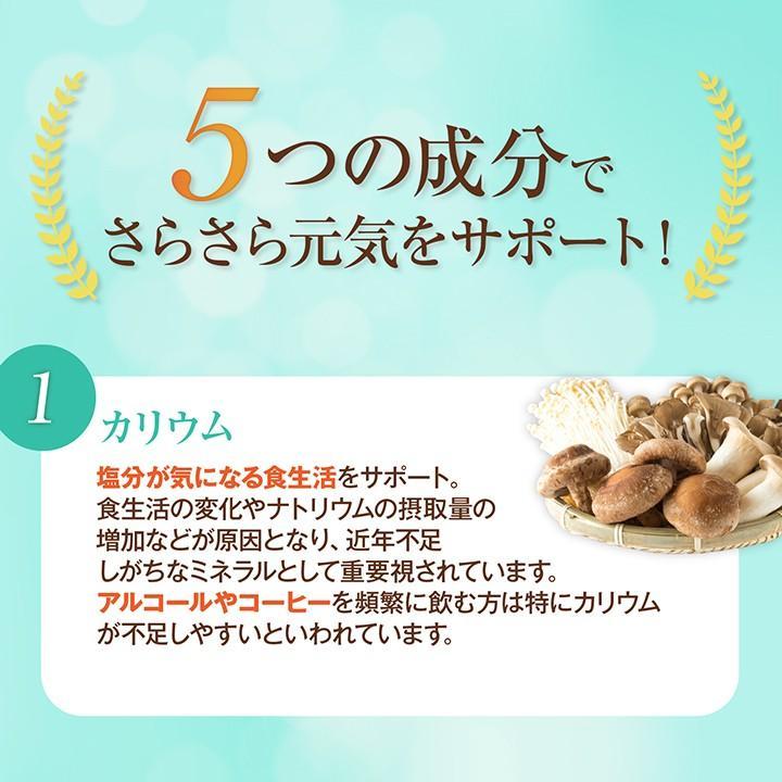 《管理栄養士監修》 ミネラルサポート サプリ カリウム 90粒 30日分|ishokudogen-store|06