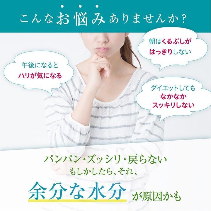 ダイエット サプリ サプリメント Smartメリロート 60粒 30日分 メリロート シトルリン|ishokudogen-store|02