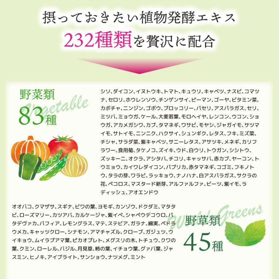 【232酵素シリーズ】 酵素 サプリ サプリメント 美妃酵素 120粒 30日分 3袋 ダイエット ishokudogen-store 05
