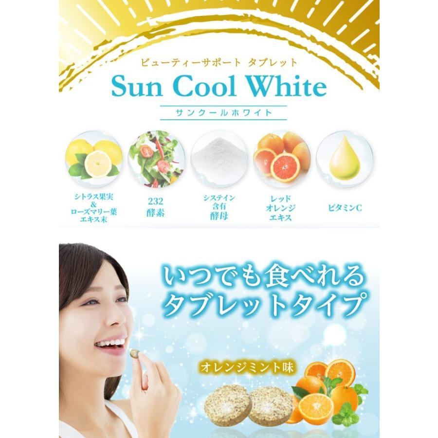 飲む太陽ケア 酵素 サプリ サプリメント サンクールホワイト 40粒 20日分 シトラス|ishokudogen-store|02