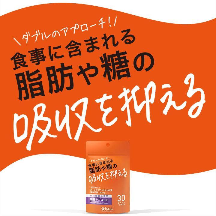 機能性表示食品 糖脂アプローチ ターミナリアベリリカ抽出物 サプリ 食事に含まれる脂肪や糖の吸収を抑える サプリ サプリメント|ishokudogen-store|05